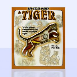 Uncover a Tiger Book Design